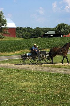 Amish Cart, Ohio