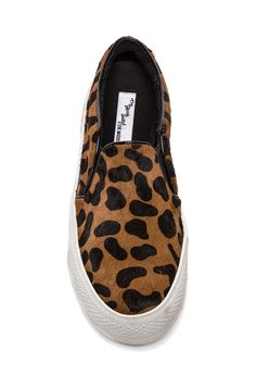Steve Madden NYC Flat with pony hair in Leopard Pony//