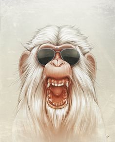 Illustration showcase for your inspiration - The Great White Angry Monkey