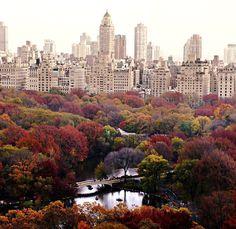 NYC <3 FALL