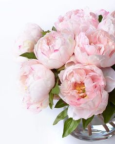 Blumen Faux or real? Don't worry, we had to double check, too. Our line of faux plants and blooms ar Fresh Flowers, Pink Flowers, Beautiful Flowers, Exotic Flowers, Yellow Roses, Pink Roses, Peonies Bouquet, Pink Peonies, Bouquets