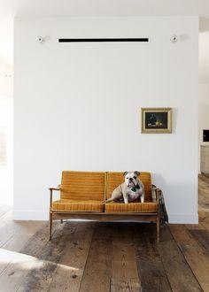 Scandinavian mid-century modern seating -- and the bulldog