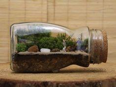 42 ideas para crear terrarios | Plantas