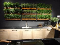 Can somebody decode this article in order to somehow acquire this technology and elegant design in indoor gardening. Highly recommend viewing the other photos on this website. This made my day. #indoorgardening #gardeningdesign #sustainabledesign
