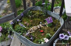 Fairy Garden Feature : FIVE - The Magic Onions