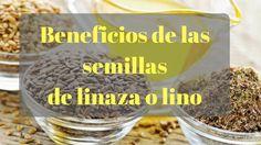 Beneficios de las semillas de linaza.