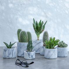 Pot en marbre moyen modèle cm, Sevan - New Deko Sites Fake Plants, Indoor Plants, Cacti And Succulents, Cactus Plants, Marble Room Decor, Marble Bedroom, Plants Are Friends, Deco Floral, Bedroom Plants
