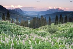 Crested Butte, Colorado. Small ski town in the middle of a bunch of mountains, beautiful scenery. Lots of hiking trails in the summer and some of the best skiing in Colorado. Also pretty hard to get to so not very many people.—k4eb6374d6