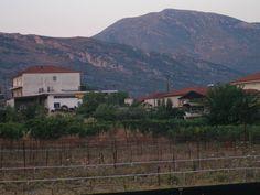 Nemea, horse & wine country