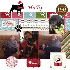 CTPR Alum Holly finally went Home for the Holidays!  #adoptdontshop #ctpr