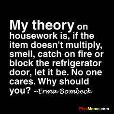 My theory on housework is, if the item doesn't multiply, smell, catch on fire or block the refrigerator, let it be. No one cares. Why should you? Erma Bombeck - from Dayton, Ohio