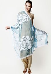 Net dupatta for a casual look.. Read more http://fashionpro.me/choosing-dupatta-complement-outfit