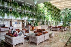 Hall with views to botanical garden / Hall con vistas al jardín botánico