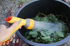 Growing Gardens, Go Green, Garden Hose, Garden Inspiration, Compost, Farmer, Flora, Vegetables, Nature