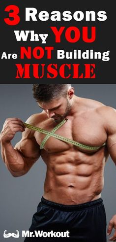 Ultimate Muscle Building Workout for Men – Mr. Gym Workouts For Men, Chest Workouts, Workout Tips, Plyometric Workout, Biceps Workout, Muscle Fitness, Fitness Tips, Fitness Motivation, Weight Gain Plan