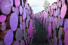 A Walkway of Severed Purple Logs by Michael McGillis