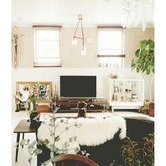 白枠のガラスケースは、どんなお部屋にも馴染みやすいスグレモノ。ガラスケースがあることで、とってもナチュラルな雰囲気になっていますね。