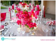 Pink bougainvillea for wedding reception centerpiece - Brilliant Studios, Turks and Caicos