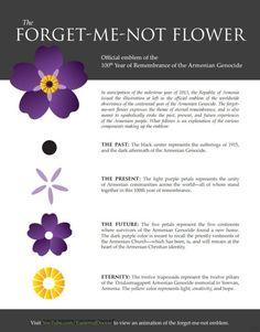Génocide arménien: des fleurs de myosotis pour se souvenir de l'Histoire