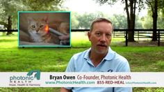 Photonic Health - How Light Therapy Works Red Heals, Pet Stairs, Red Light Therapy, Light Works, Reduce Inflammation, Pet Health, Health And Safety, Dog Gifts, Pain Relief