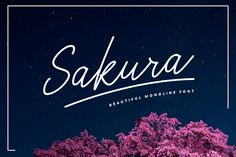 Sakura Font Set | $13 Date end 2! by ShowUp! Typefoundry on @creativemarket
