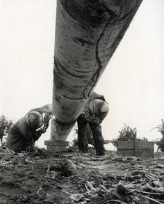 Laying a gas pipeline