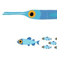 Great British Fish - jim field