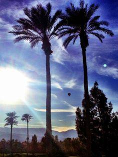 Palm Desert.. Beautiful