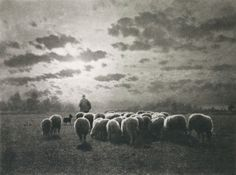 Au Coucher Du Soleil, 1900 / Photo: Léonard Misonne