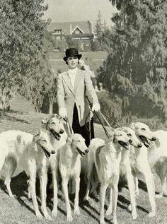 Kitty Carlisle with borzoi dogs.