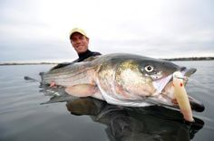 The 25 Best Striper Surf Lures of All Time | Field & Stream