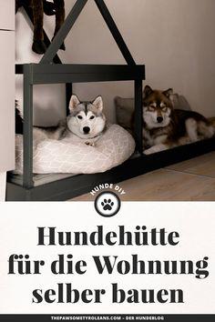 die 12 besten bilder von hundeh tte selber bauen animais animales und animaux. Black Bedroom Furniture Sets. Home Design Ideas