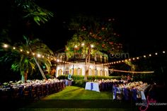 Hemingway House Wedding, Key West, Florida Wedding Photography. The first 2014 couple that has signed a contract and paid a deposit for this venue will receive A COMPLIMENTARY 16x20 CANVAS OR 8x8 PRESS ALBUM. Contact love@alyssamorganphotography.com for more details.