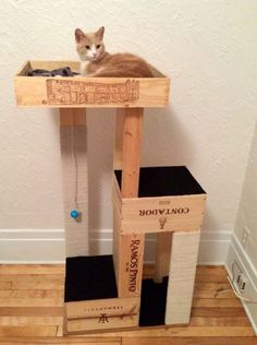 DIY Cat Tree with Wine Crate  Here's an eco-friendly use for old wine crates. Your cat will be so happy too!