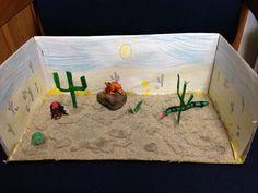 desert diarama