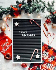 """Iris 🌸 Travel & Lifestyle on Instagram: """"Hello December, hello christmas time 🎄🎅🏼 Endlich ist es wieder so weit! 🤩 Wer freut sich auch schon so auf die Vorweihnachtszeit und auf…"""" Iris, Hello December, Christmas Time, Lettering, Instagram, Drawing Letters, Bearded Iris, Brush Lettering, Irises"""