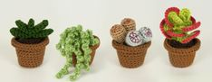 succulent collection 2 crochet patterns by planetjune