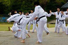 taekwondo back kick Kukkiwon demo team