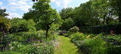 Wiesenweg im Naturgarten