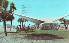 The Public Beach at Venice,Florida