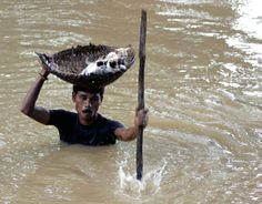 This picture of a villager carrying stranded kittens to dry land during floods in Cuttack City, India.