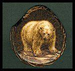 'Iced' - Polar Bear on Ice. Pyrography (woodburning) on a Tagua slice. (Palm Ivory) - Sue Walters