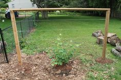 Learn how to build a wire trellis with this DIY weekend project. This trellis is great for climbing vegetables, grapes and even roses! via @earthfoodfire