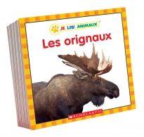 Ces petits livres au texte simple, remplis de belles photos, assurent un apprentissage facile et amusant. Partagez-les avec des lecteurs débutants et voyez comment leurs compétences se développent!