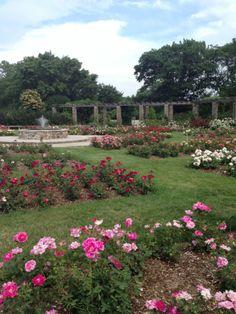 Love the garden for an outdoor wedding.