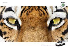 Publicités Design & Créatives - #Olybop