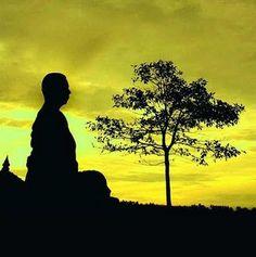 Medicina Alternativa, saude e plantas medicinais: Benefícios da Meditação