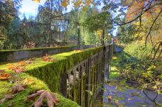 Seattle Arboretum, this is why I love running. Photo via meritweb.com