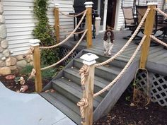 rope deck railing for top of deck Deck Railing Design, Patio Railing, Rope Railing, Rope Fence, Backyard Beach, Outdoor Projects, Outdoor Decor, Seaside Garden, Beach Gardens