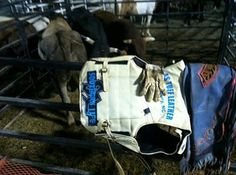 Gearing up for that rodeo, Southern Life Apparel, LLC